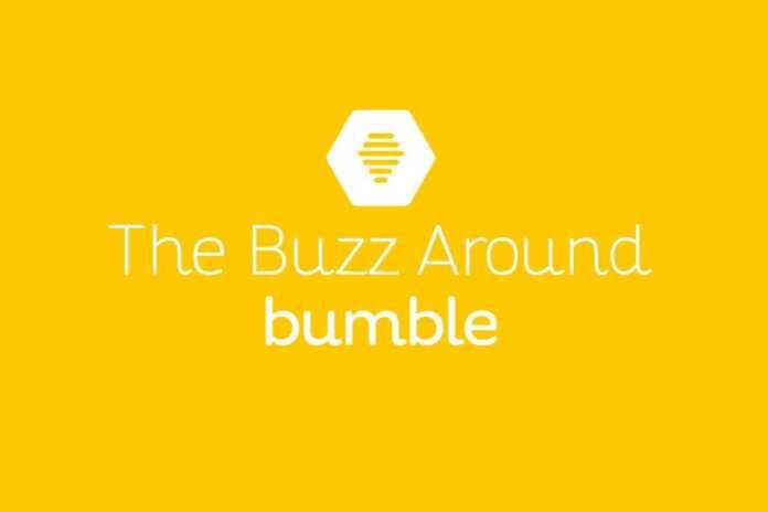 The-Buzz-Around-Bumble