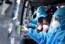 Corona Test Procedure In India