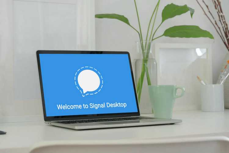 how to use Signal on laptop 1