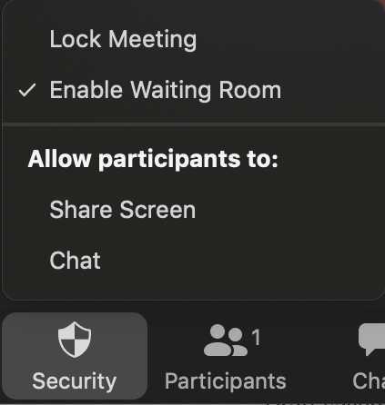 zoom meeting security 1