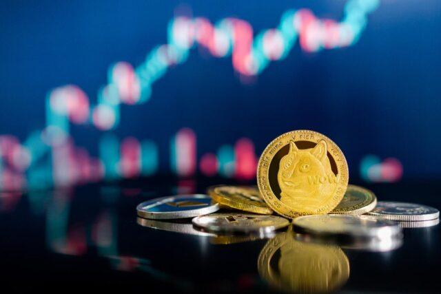 Shiba Inu coin 1